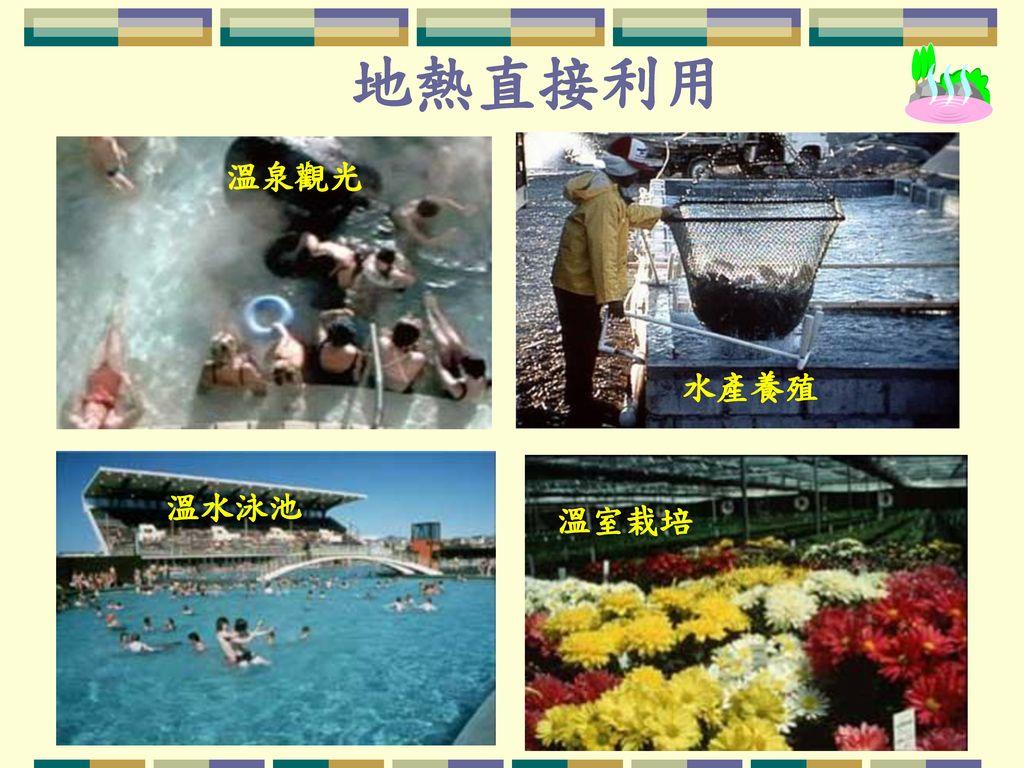 地熱直接利用 溫泉觀光 水產養殖 溫水泳池 溫室栽培