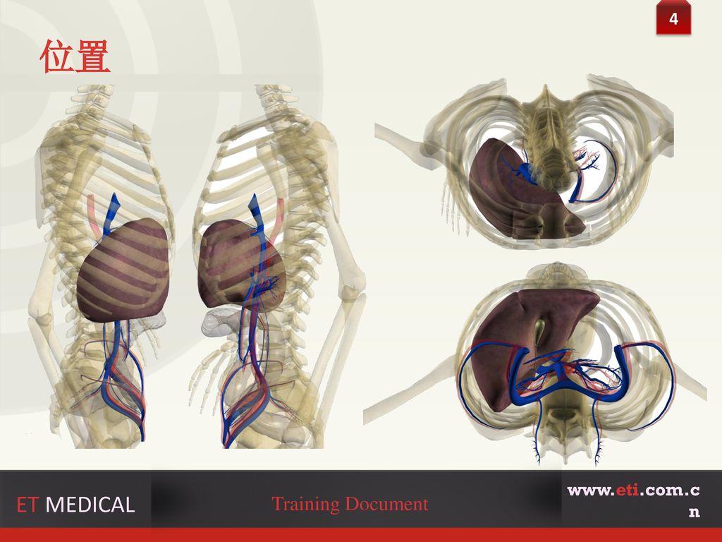 4 位置 www.eti.com.cn ET MEDICAL Training Document