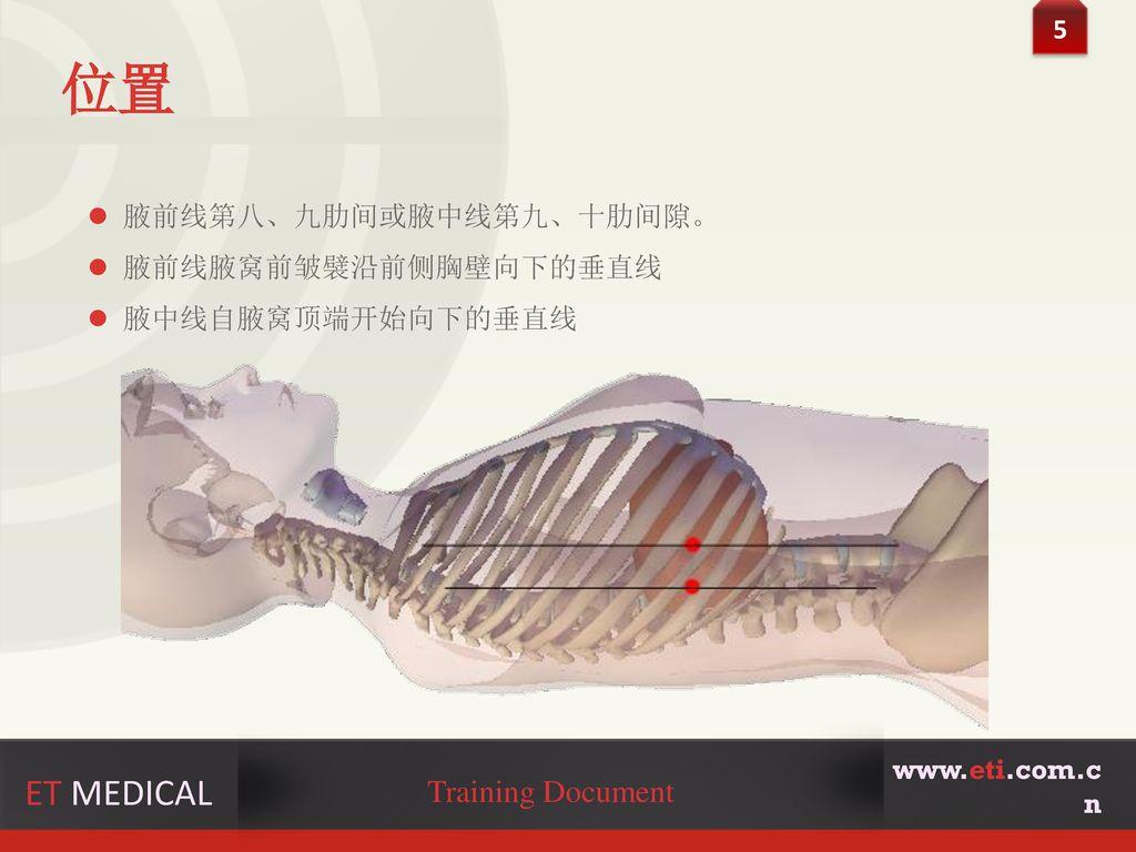 位置 ET MEDICAL Training Document 5 腋前线第八、九肋间或腋中线第九、十肋间隙。