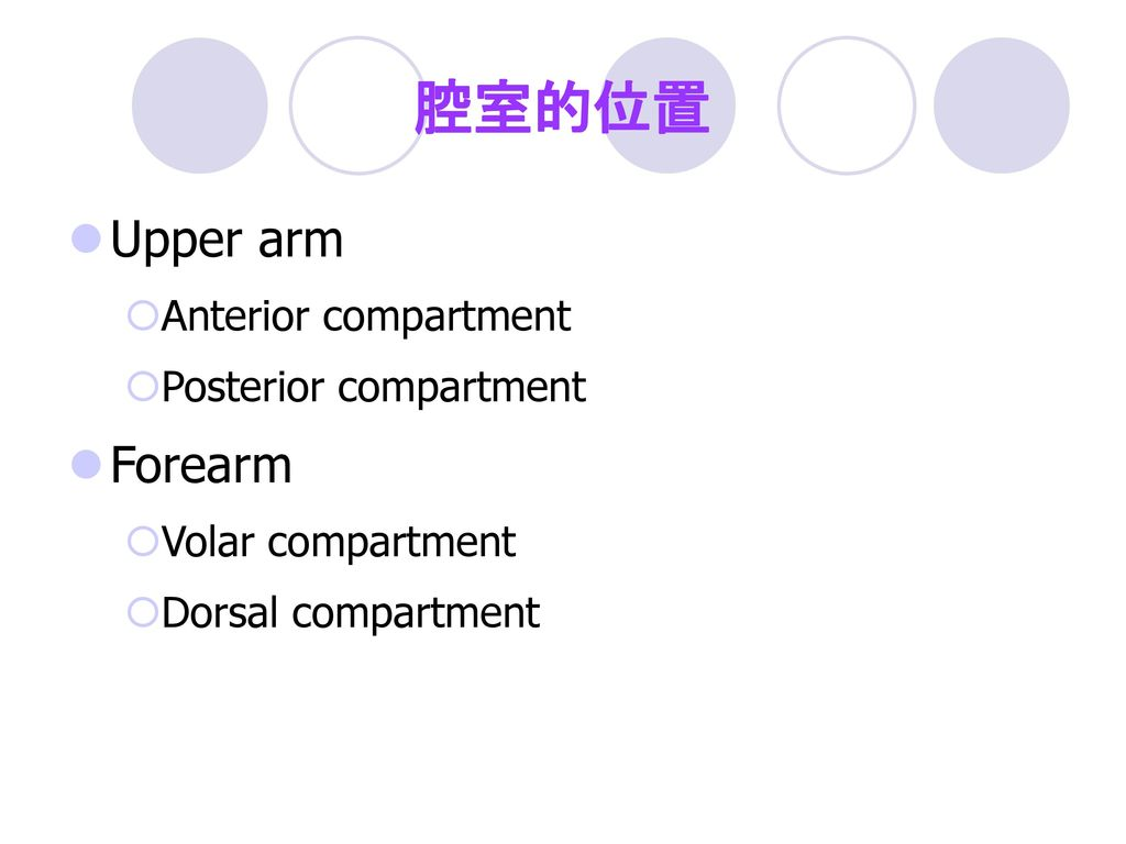 腔室的位置 Upper arm Forearm Anterior compartment Posterior compartment