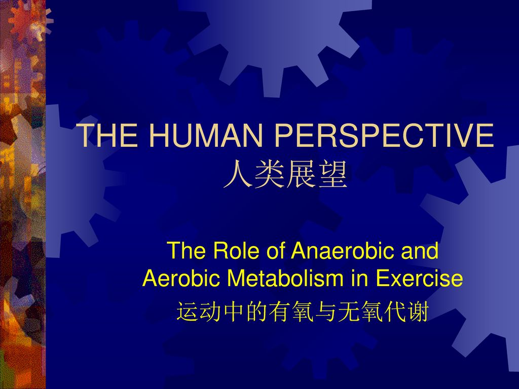 THE HUMAN PERSPECTIVE 人类展望
