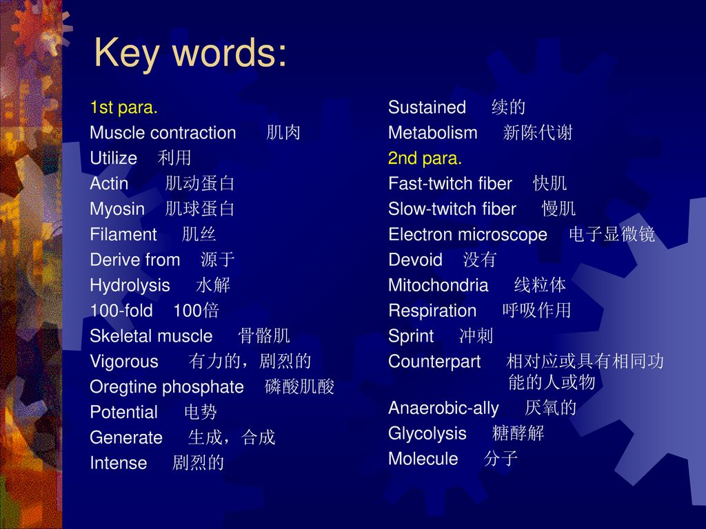 Key words: 1st para. Muscle contraction 肌肉 Utilize 利用 Actin 肌动蛋白