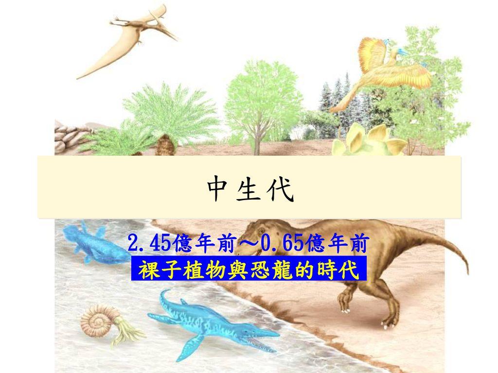 中生代 2.45億年前~0.65億年前 裸子植物與恐龍的時代