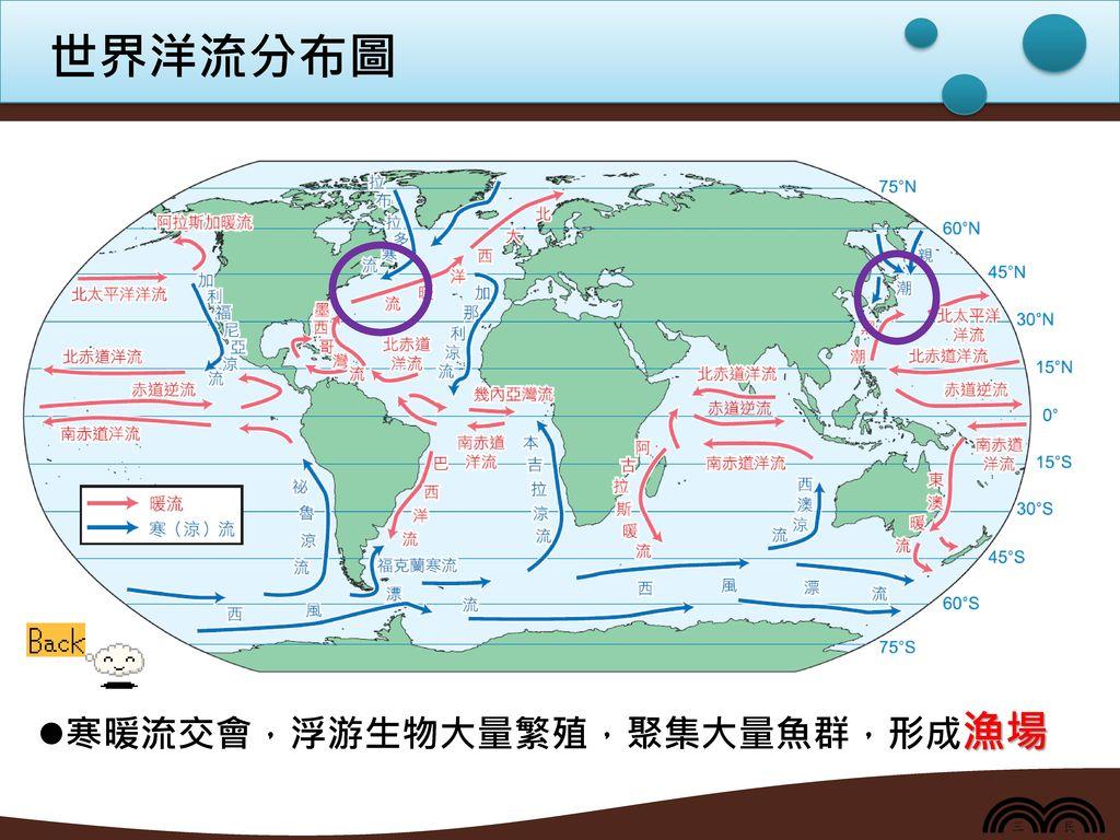 世界洋流分布圖 寒暖流交會,浮游生物大量繁殖,聚集大量魚群,形成漁場