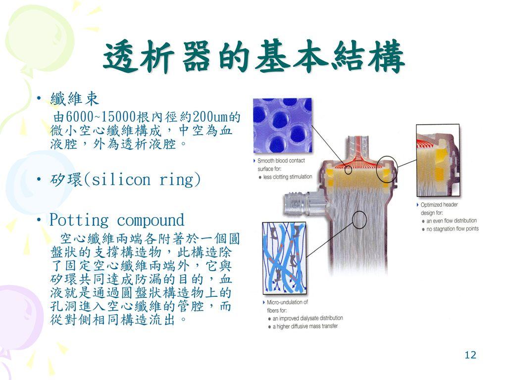 透析器的基本結構 纖維束 矽環(silicon ring) Potting compound