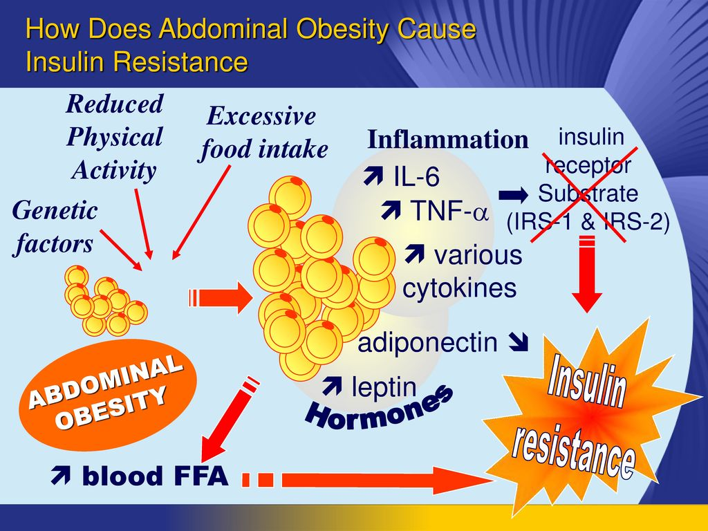 How Does Abdominal Obesity Cause Insulin Resistance