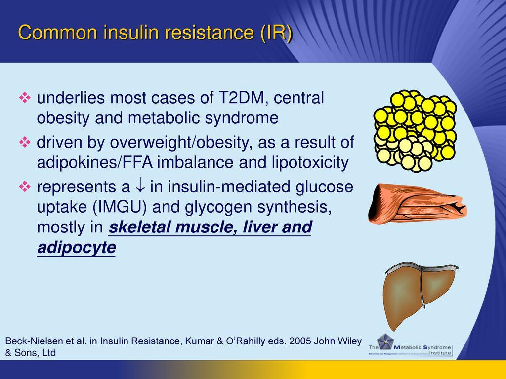 Common insulin resistance (IR)