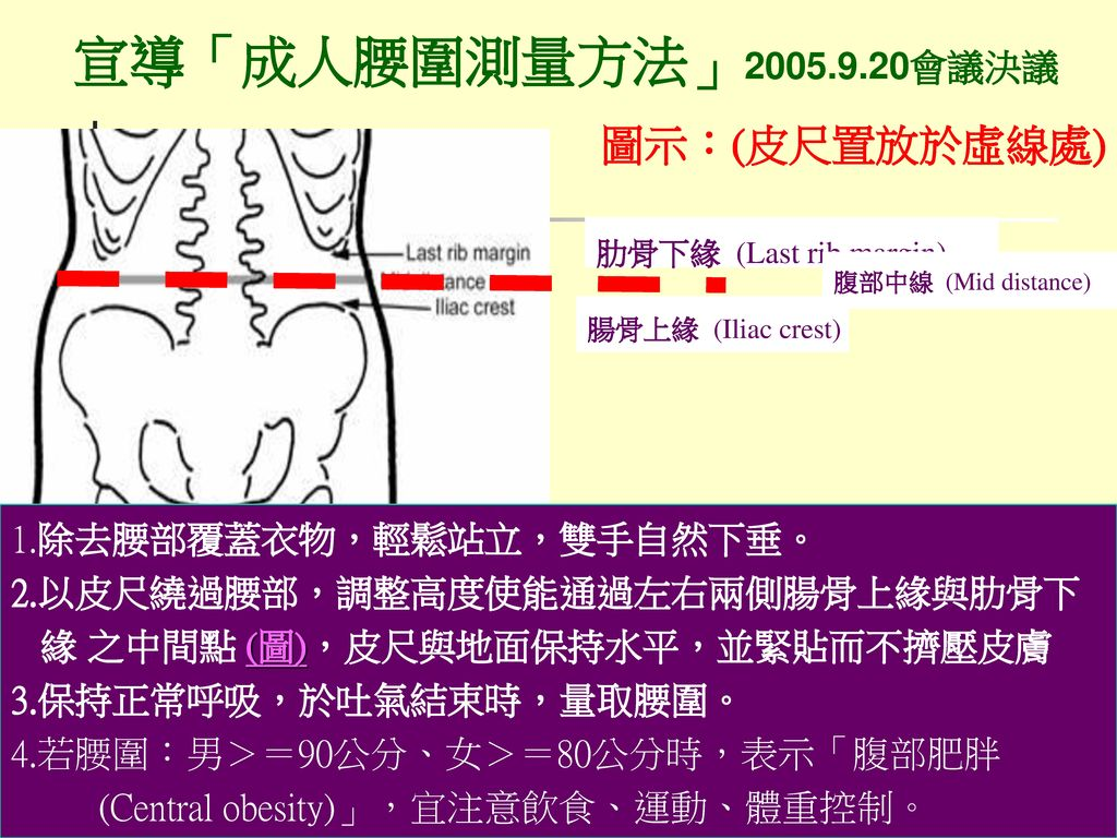 宣導「成人腰圍測量方法」2005.9.20會議決議 圖示:(皮尺置放於虛線處) 1.除去腰部覆蓋衣物,輕鬆站立,雙手自然下垂。