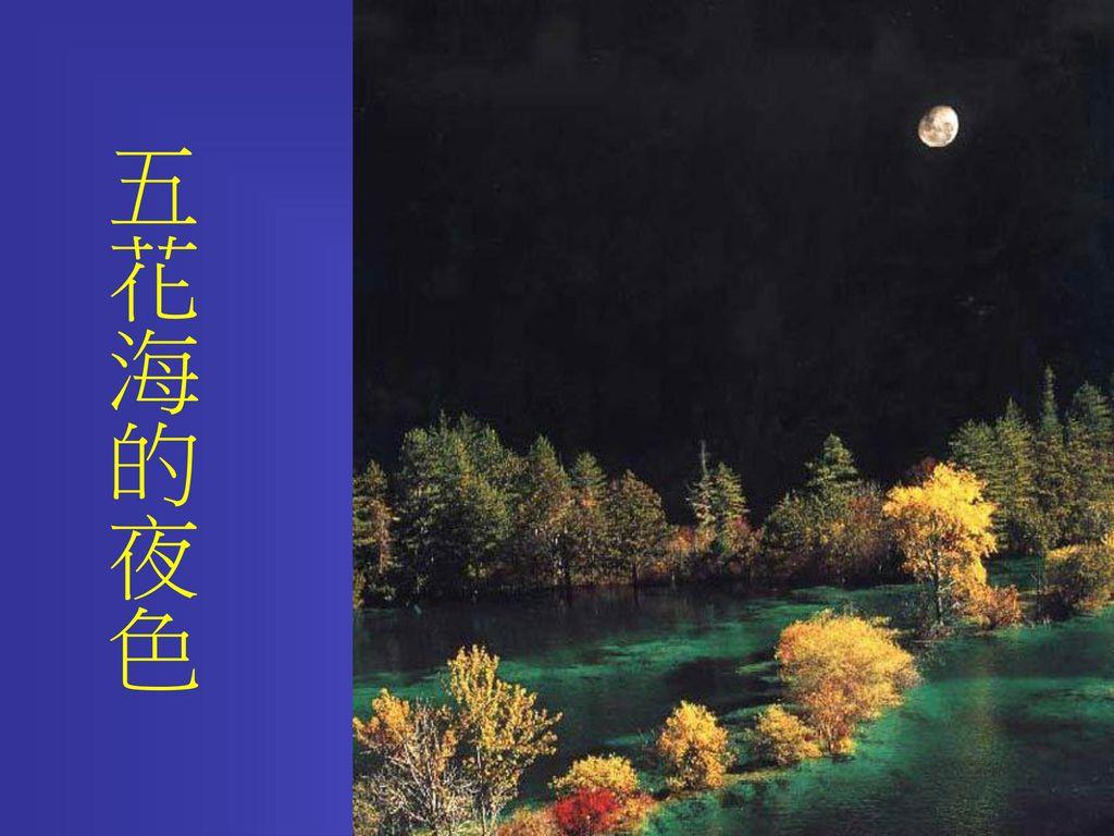 五花海的夜色