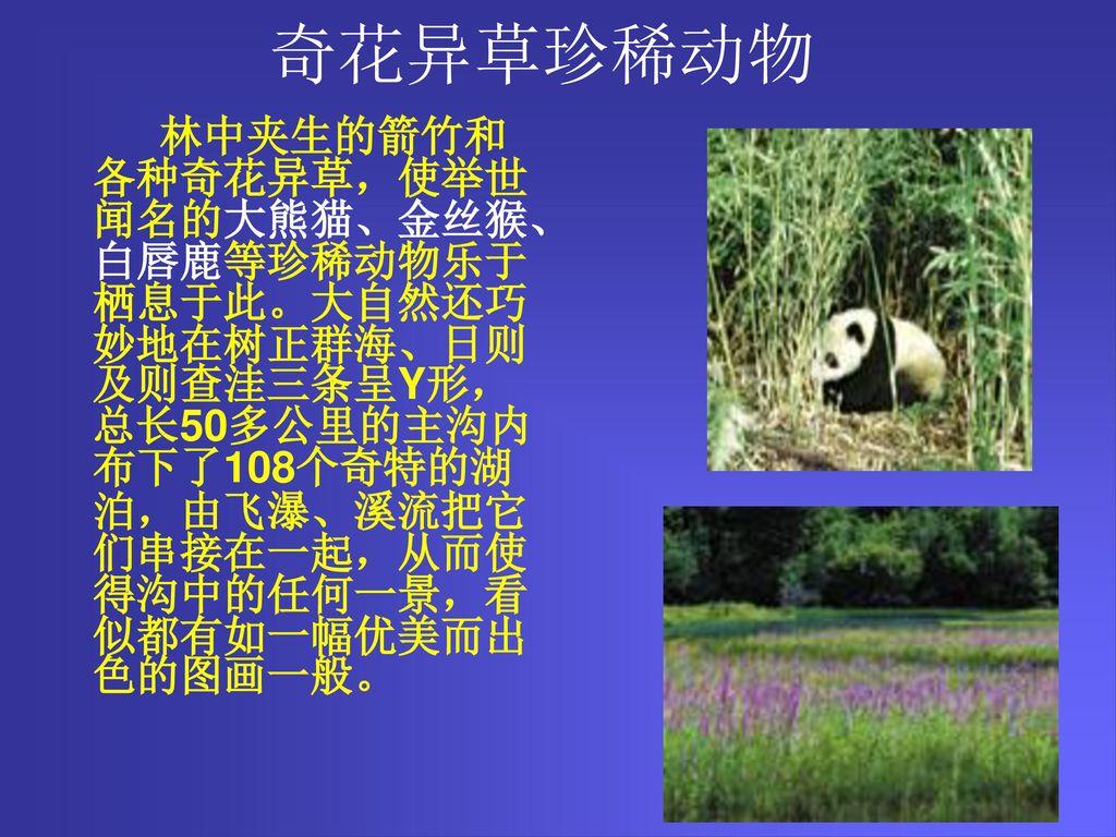 奇花异草珍稀动物