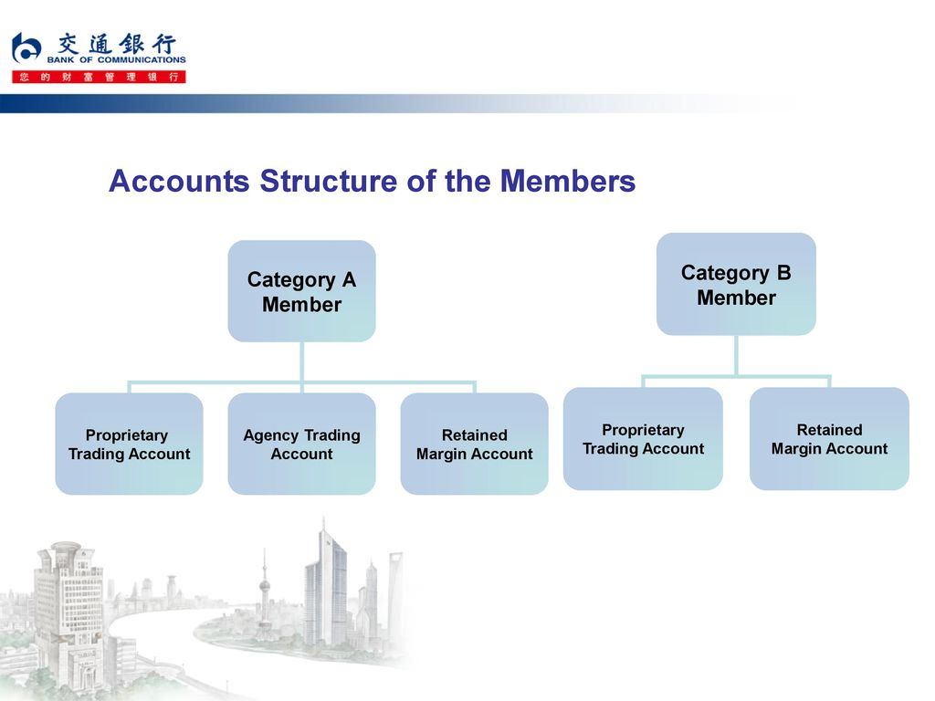 Accounts Structure of the Members