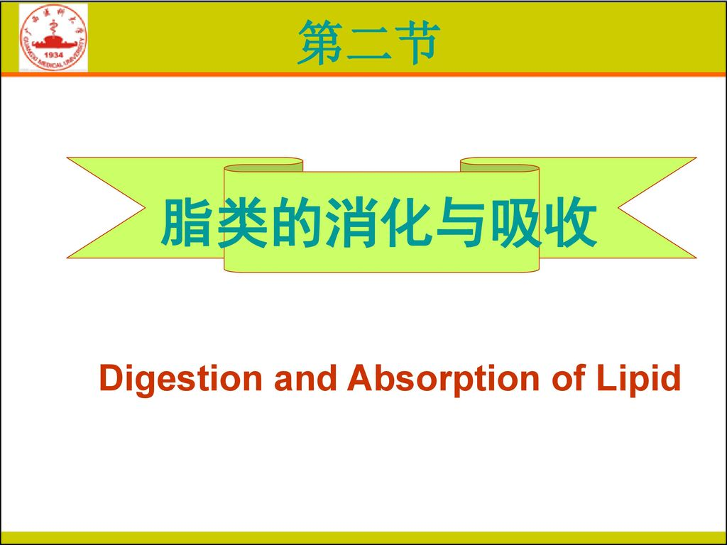 Digestion and Absorption of Lipid