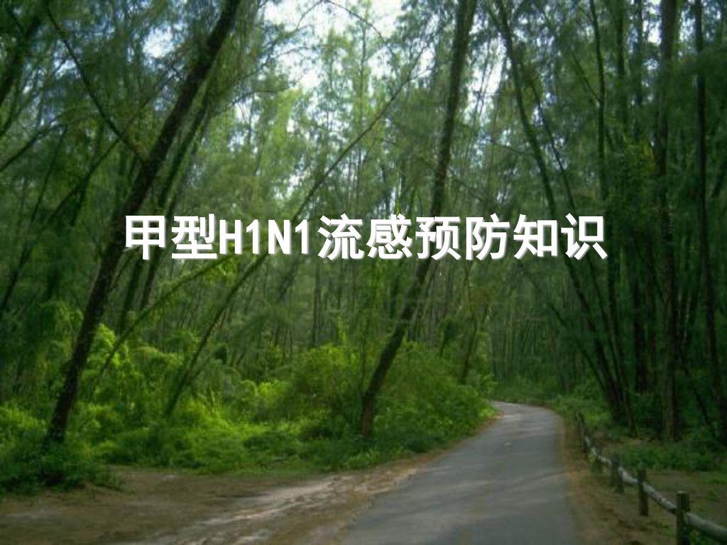 甲型H1N1流感预防知识
