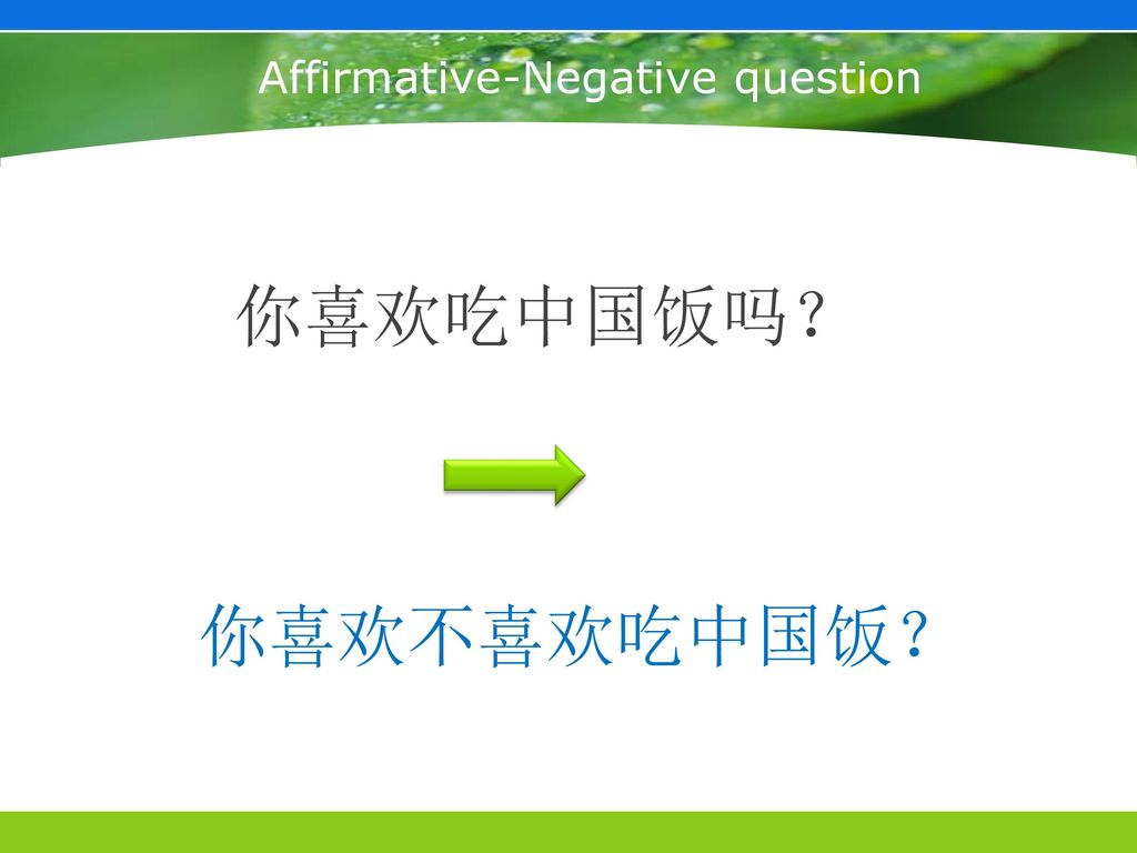 Affirmative-Negative question