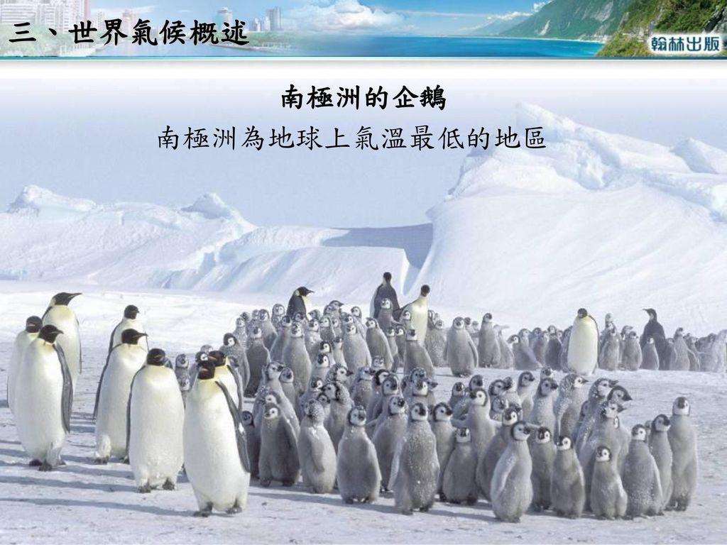 三、世界氣候概述 南極洲的企鵝 南極洲為地球上氣溫最低的地區
