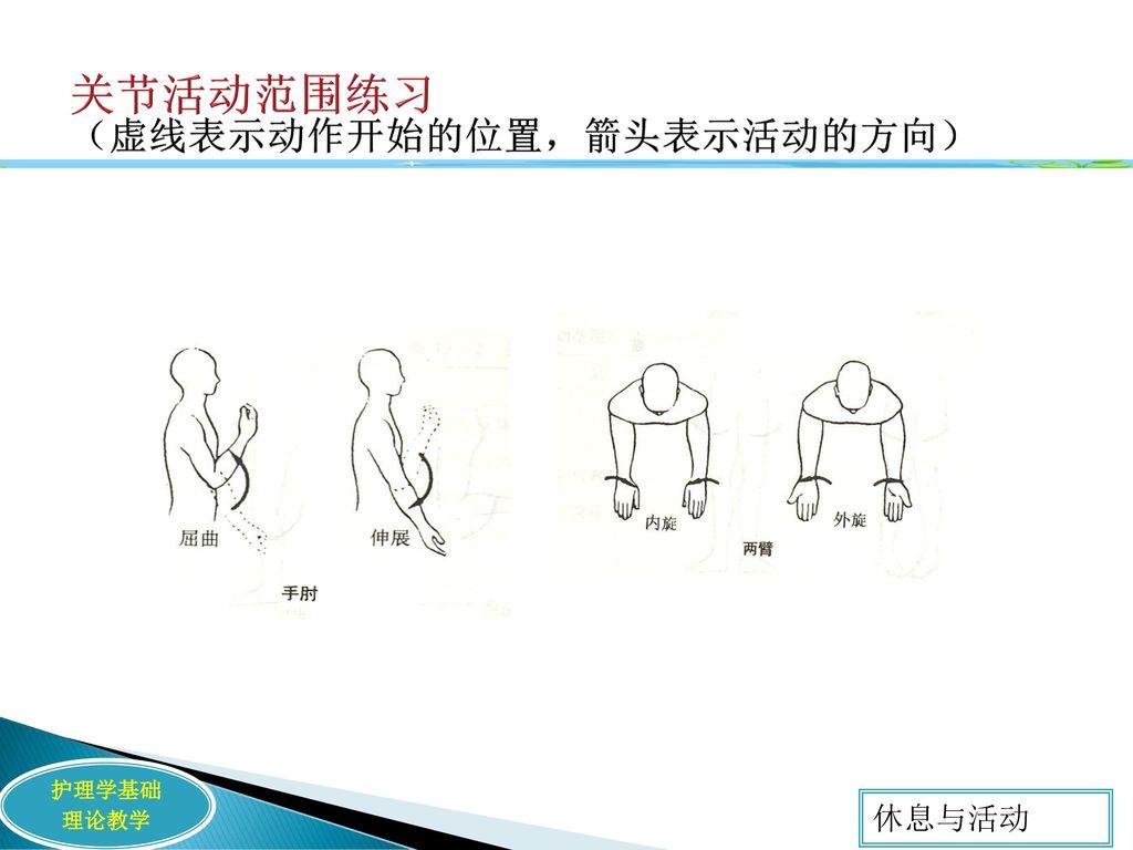 关节活动范围练习 (虚线表示动作开始的位置,箭头表示活动的方向)