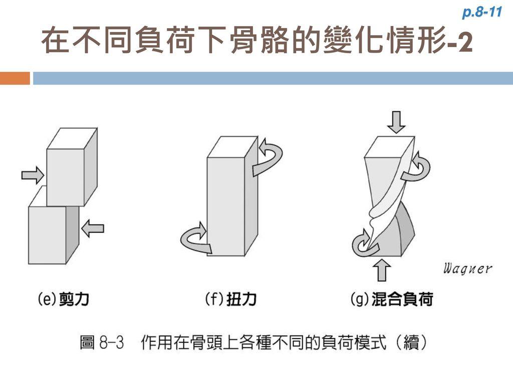 p.8-11 在不同負荷下骨骼的變化情形-2