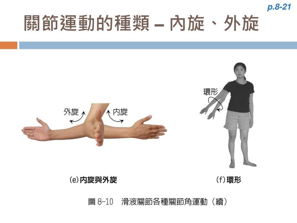 p.8-21 關節運動的種類 – 內旋、外旋