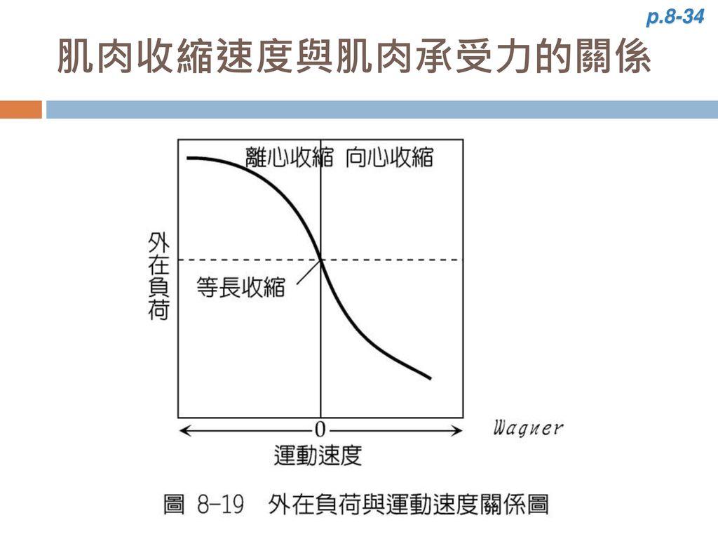 p.8-34 肌肉收縮速度與肌肉承受力的關係