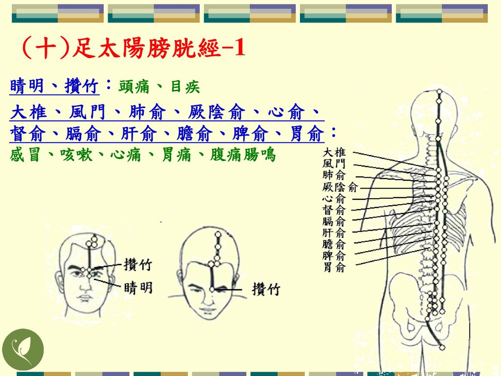 (十)足太陽膀胱經-1 睛明、攢竹:頭痛、目疾