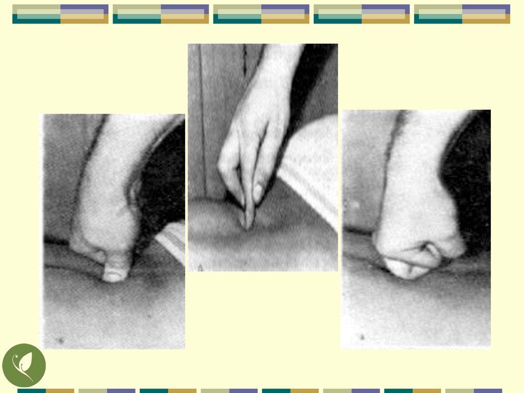 利用不同的指頭施力,進行按、壓、揉的動作。