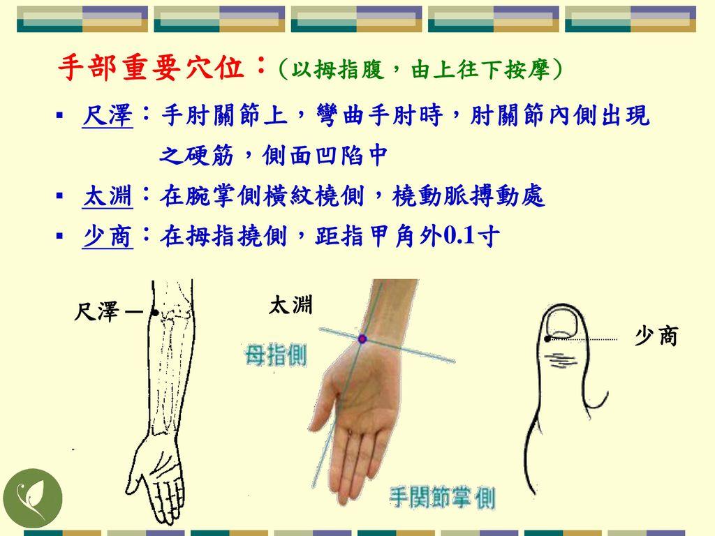 手部重要穴位:(以拇指腹,由上往下按摩)