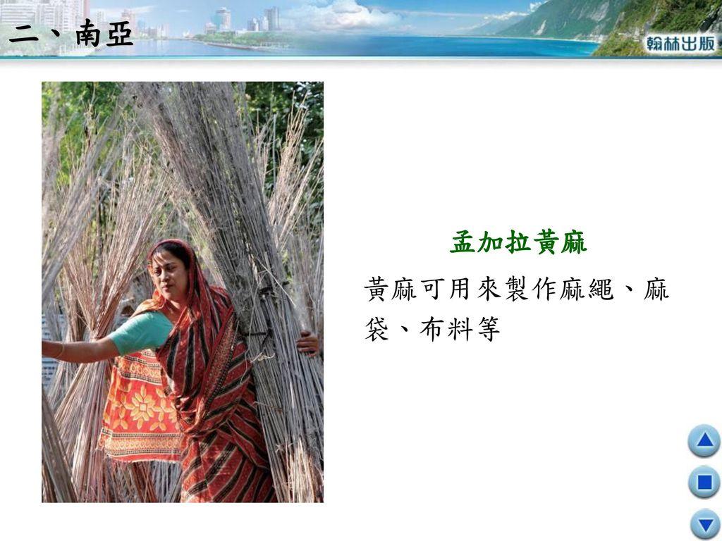 二、南亞 孟加拉黃麻 黃麻可用來製作麻繩、麻袋、布料等