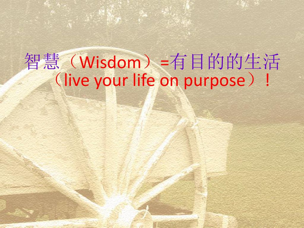 智慧(Wisdom)=有目的的生活(live your life on purpose)!