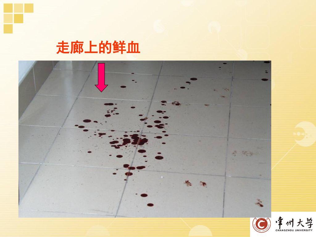 走廊上的鲜血