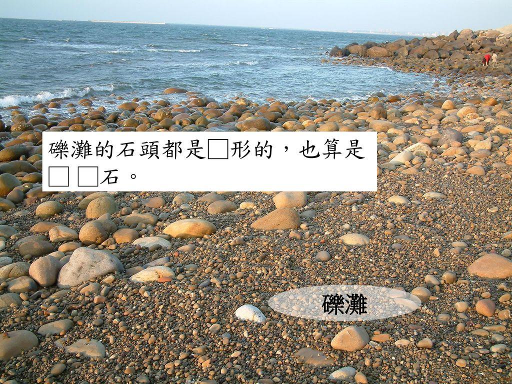 礫灘的石頭都是□形的,也算是□ □石。 礫灘