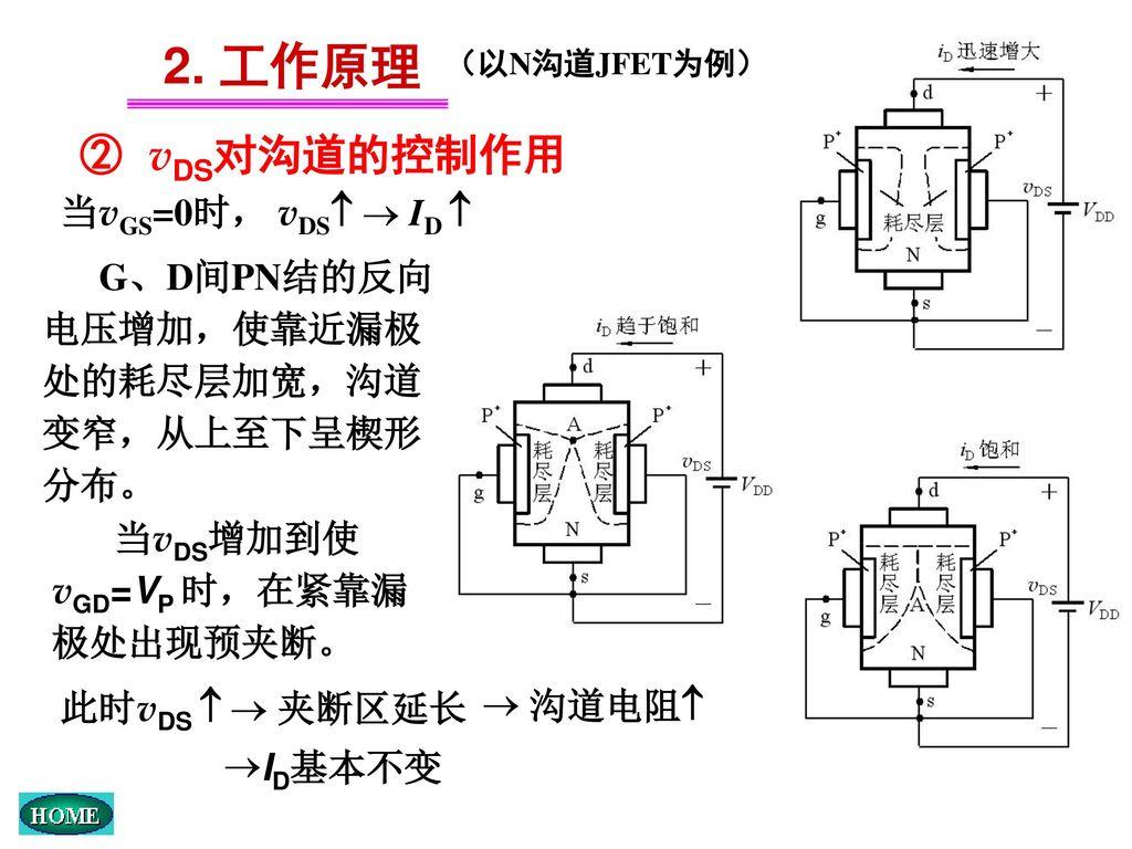 2. 工作原理 ② vDS对沟道的控制作用 当vGS=0时, vDS  ID 