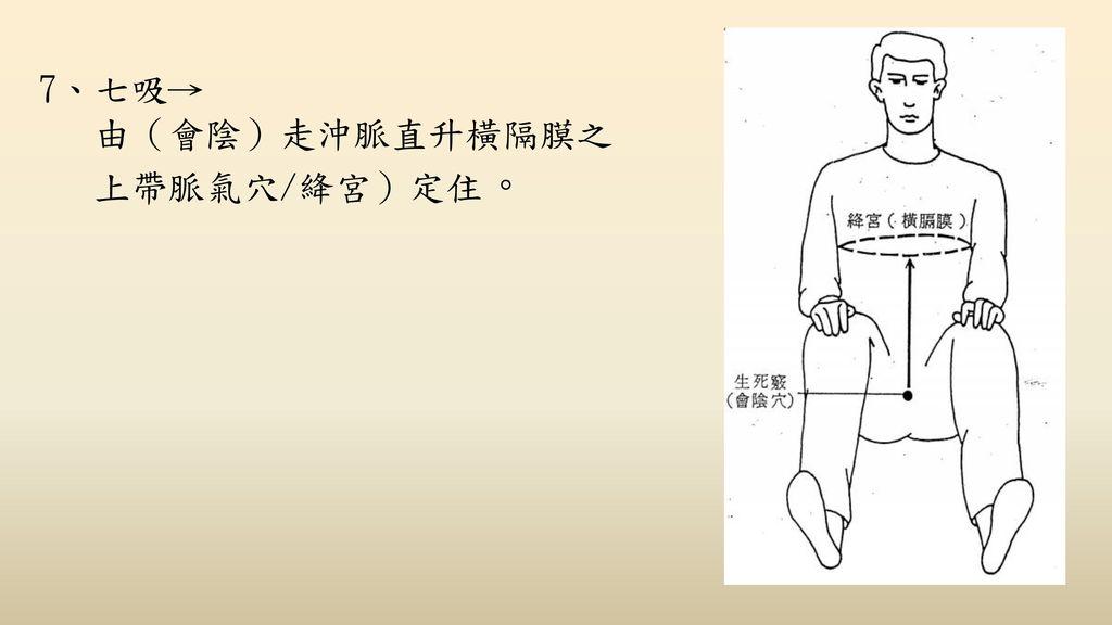 7、七吸→ 由(會陰)走沖脈直升橫隔膜之 上帶脈氣穴/絳宮)定住。
