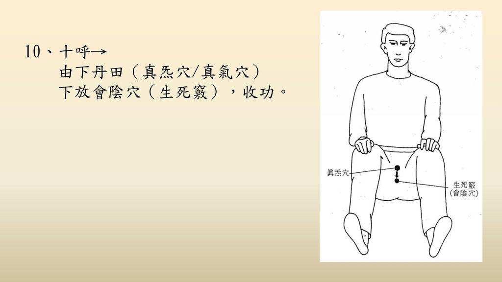 10、十呼→ 由下丹田(真炁穴/真氣穴) 下放會陰穴(生死竅),收功。