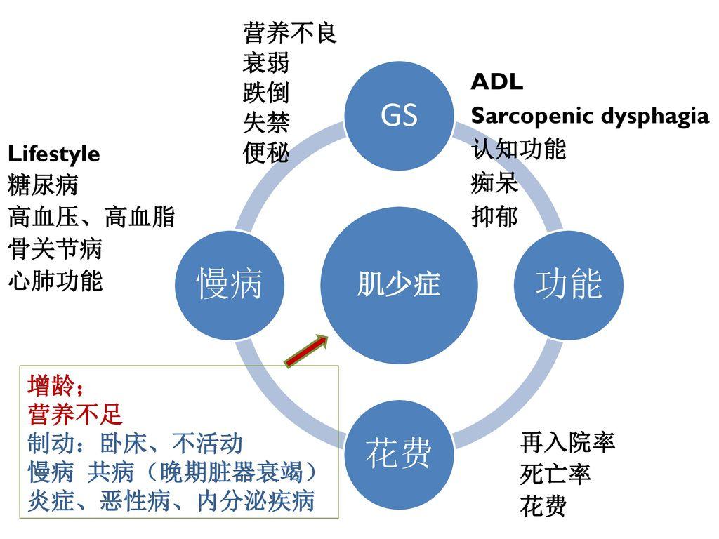 肌少症 营养不良 衰弱 跌倒 失禁 便秘 ADL Sarcopenic dysphagia 认知功能 痴呆 抑郁 Lifestyle 糖尿病