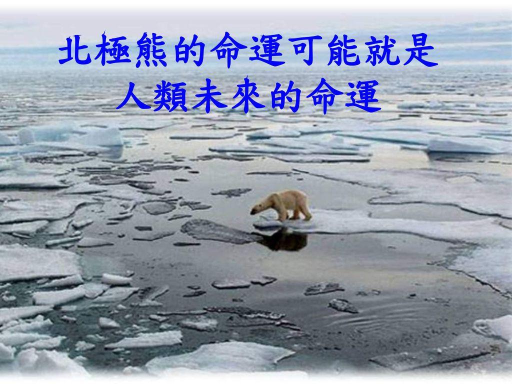 北極熊的命運可能就是 人類未來的命運