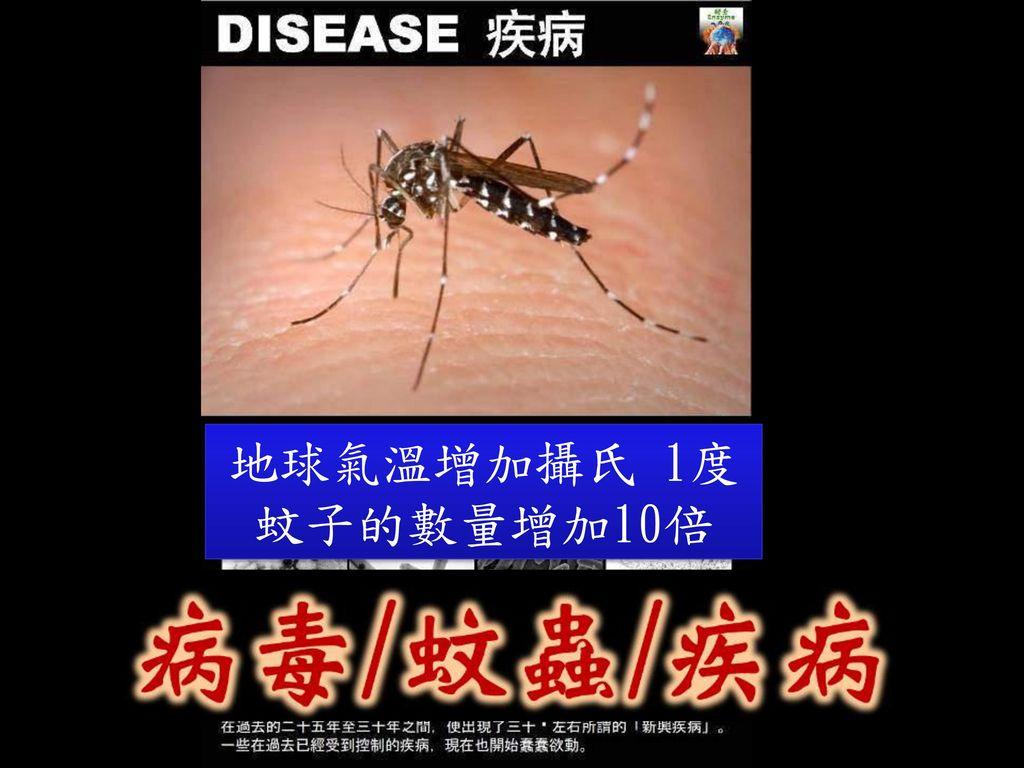 地球氣溫增加攝氏 1度 蚊子的數量增加10倍 35 35