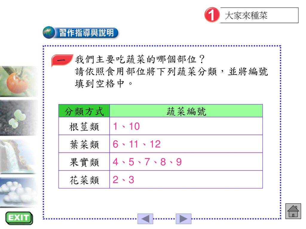 請依照食用部位將下列蔬菜分類,並將編號填到空格中。