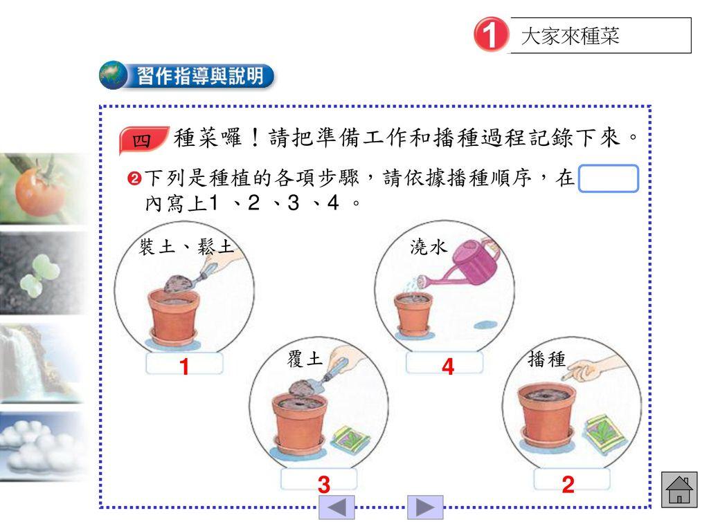 種菜囉!請把準備工作和播種過程記錄下來。