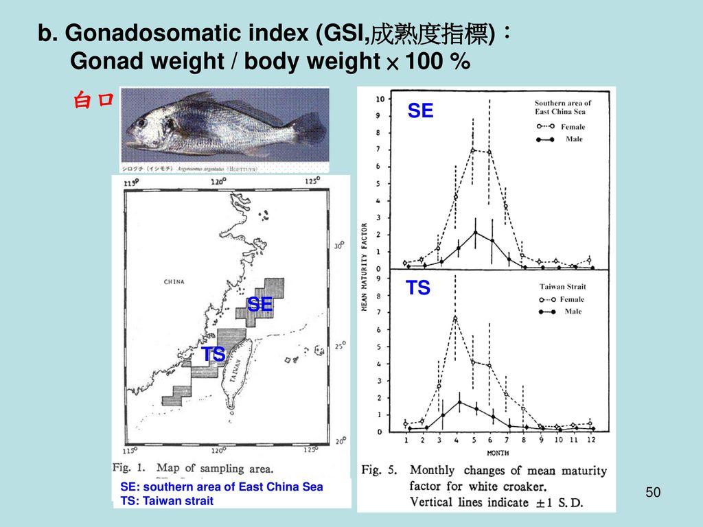 b. Gonadosomatic index (GSI,成熟度指標): Gonad weight / body weight × 100 %