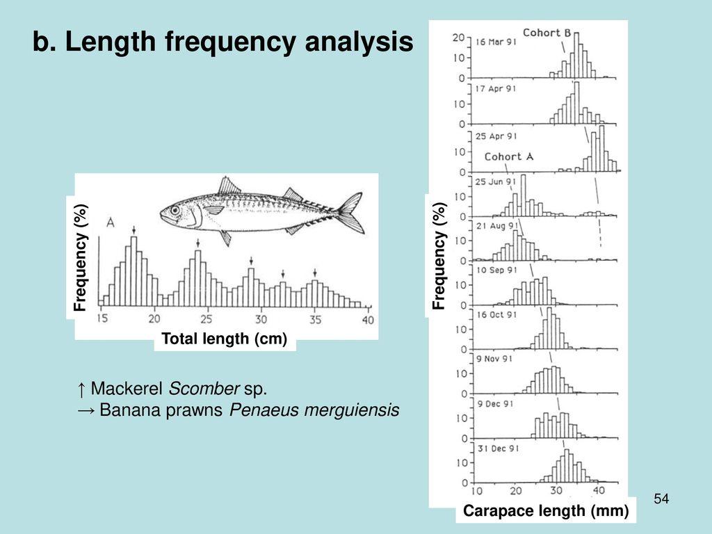 b. Length frequency analysis