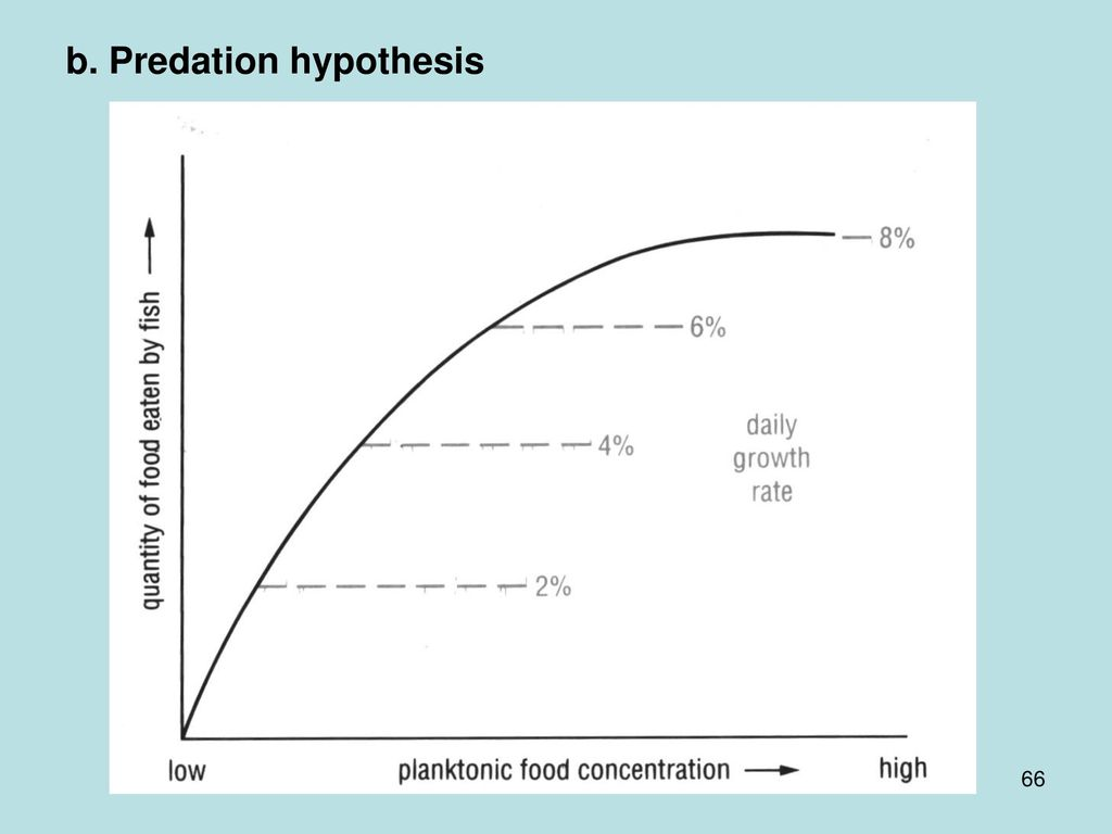 b. Predation hypothesis