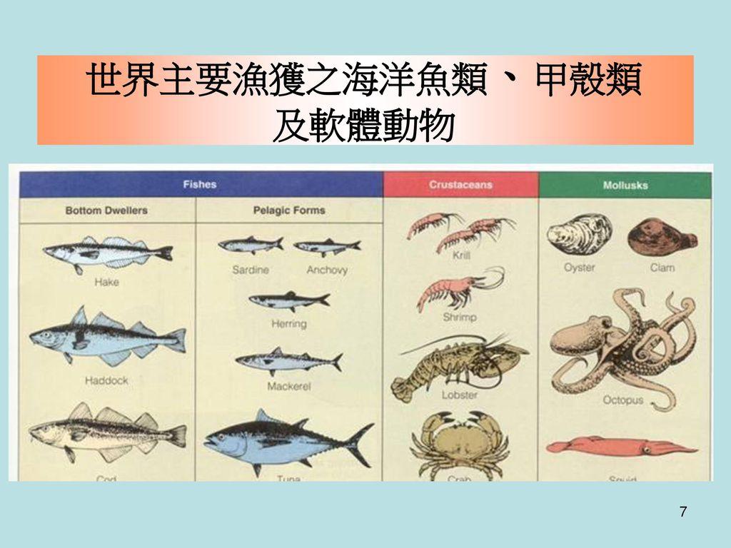 世界主要漁獲之海洋魚類、甲殼類 及軟體動物