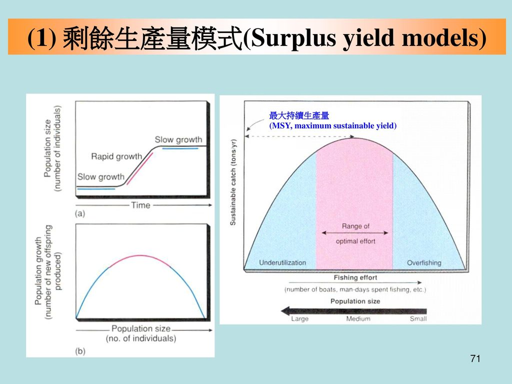 (1) 剩餘生產量模式(Surplus yield models)