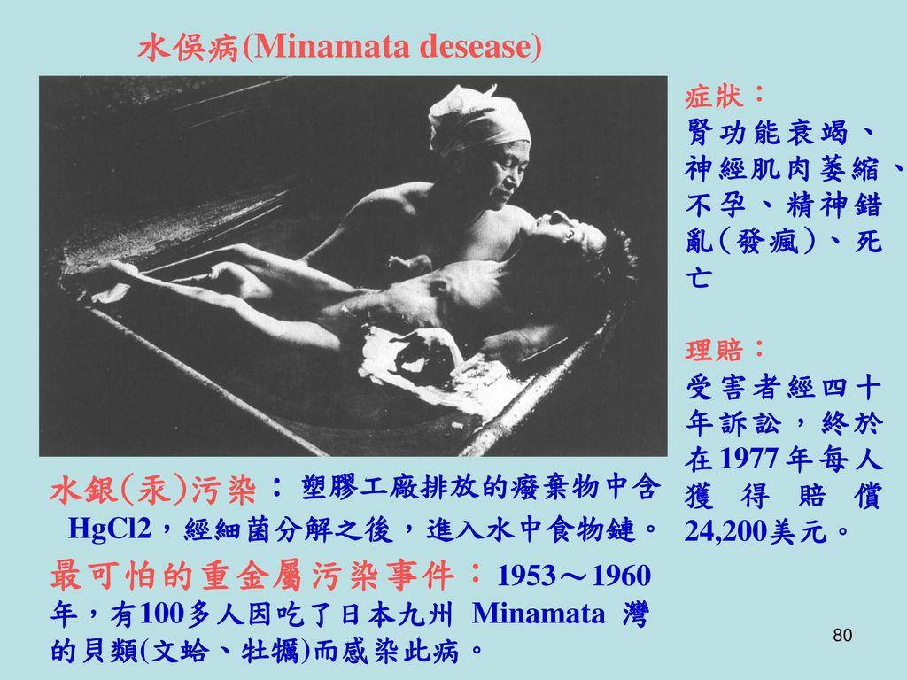 水俁病(Minamata desease)