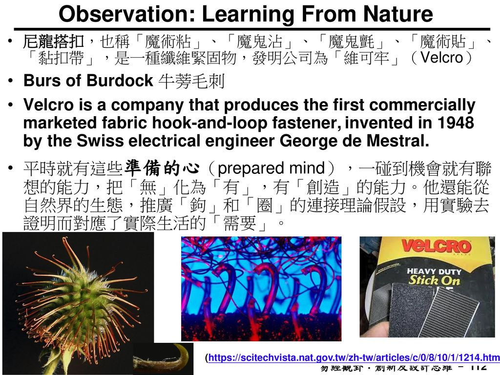 Observation: Learning From Nature