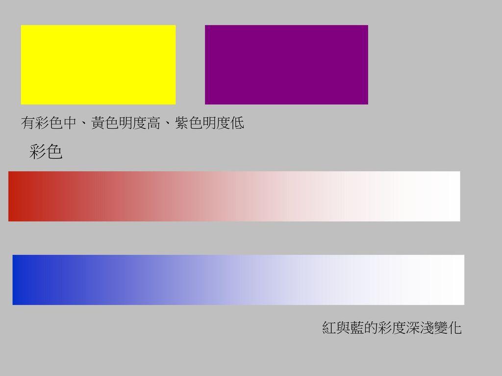 有彩色中、黃色明度高、紫色明度低 彩色 紅與藍的彩度深淺變化