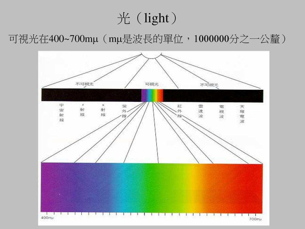 光(light) 可視光在400~700mm(mm是波長的單位,1000000分之一公釐)