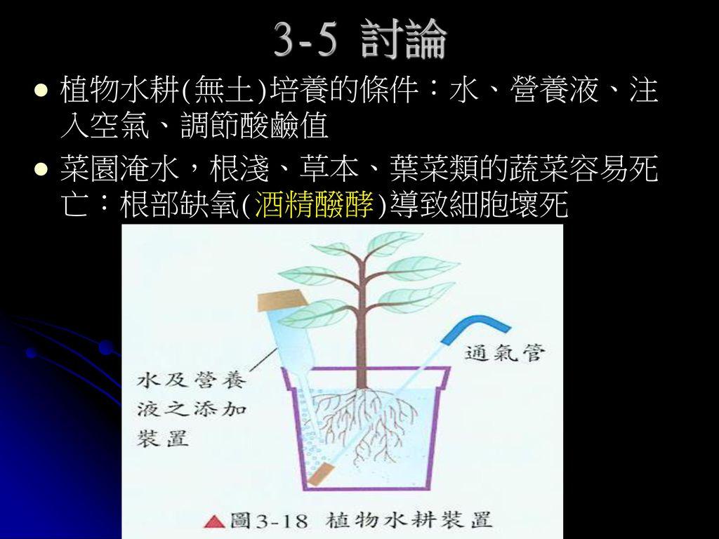 3-5 討論 植物水耕(無土)培養的條件:水、營養液、注入空氣、調節酸鹼值