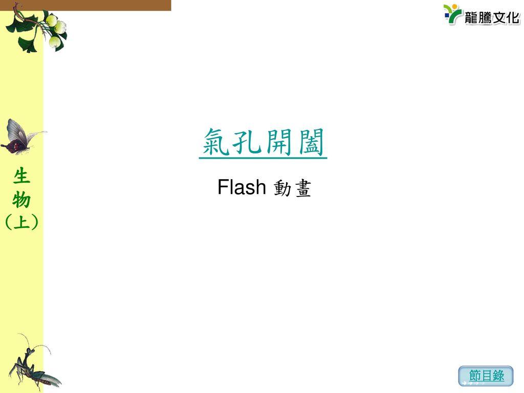 氣孔開闔 Flash 動畫