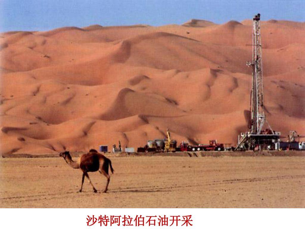 西亚—五海三洲之地 热带沙漠气候:炎热干燥 降水稀少